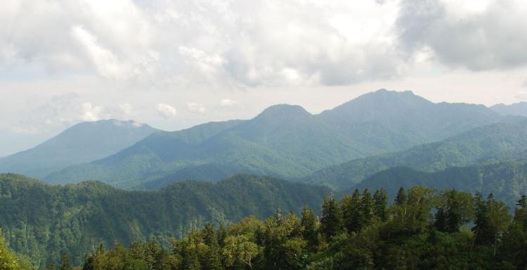 山あり谷ありのツボの名前