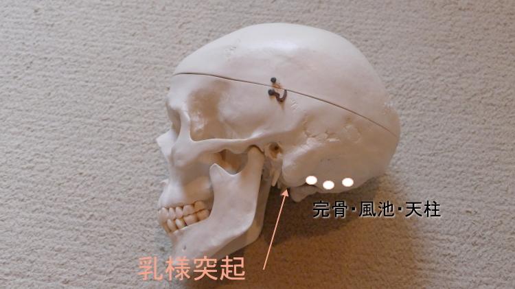 頭痛のツボ