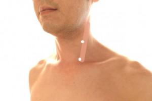 胸鎖乳突筋のツボ