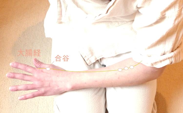 腕のツボ:大腸経、合谷