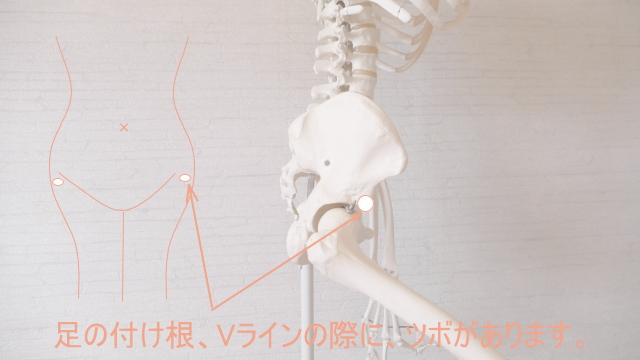股関節のツボ2