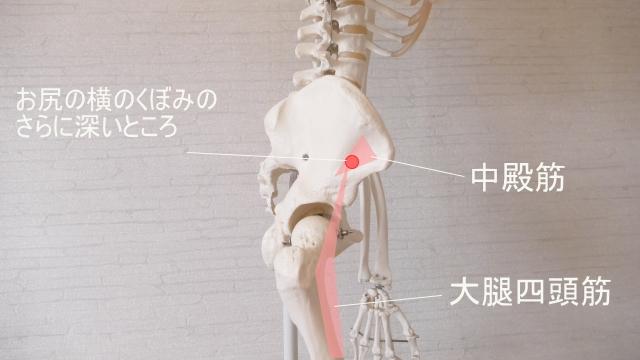 筋肉痛のツボの場所