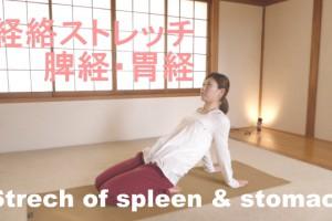 脾経と胃経の経絡ストレッチ