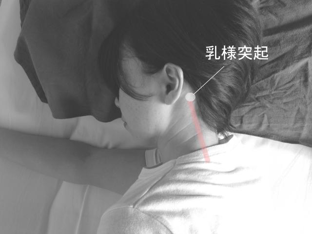 頭痛のストレッチ・乳様突起のスジ