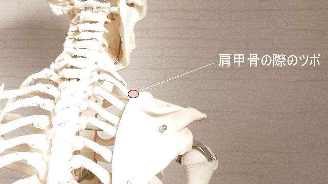頭痛のツボ・肩甲骨