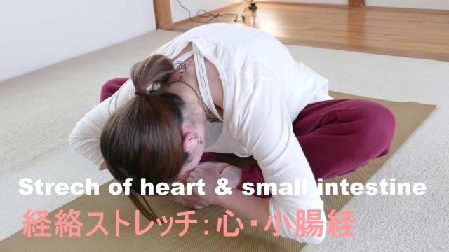 心経、小腸経のストレッチ