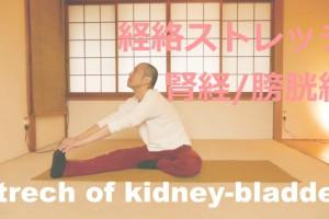 腎経膀胱経のストレッチ