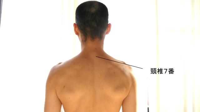 首の骨・頸椎7番
