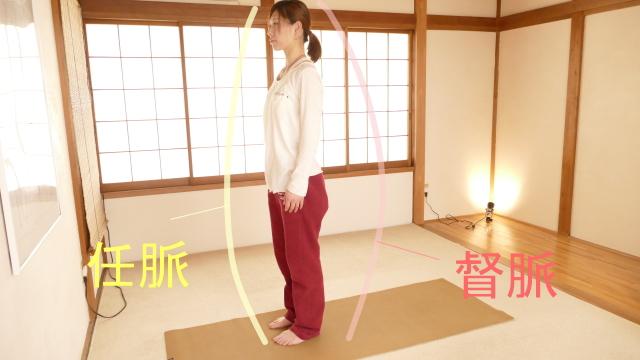 任脈と督脈。体の正中の気の流れ、前を任脈、後ろを督脈と呼びます。