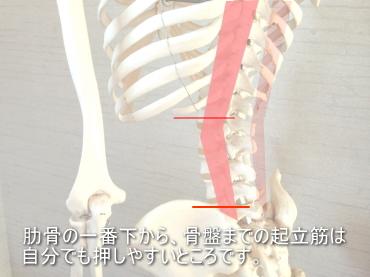 腰痛のマッサージ