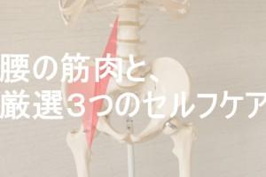 腰の筋肉のセルフケア