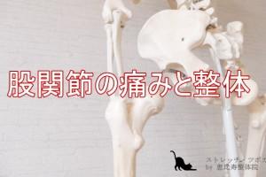 股関節の痛みと整体のススメ