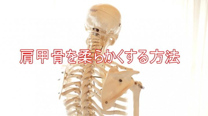 肩甲骨を柔らかくする方法