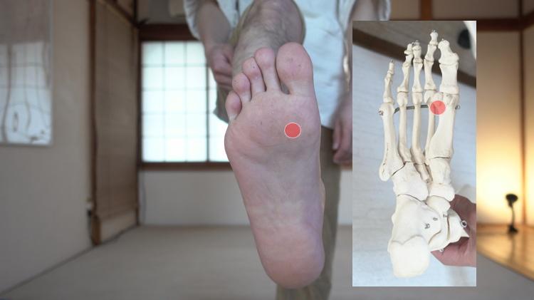 足首と親指の付け根