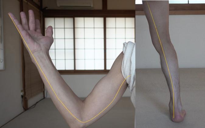 手足の腎経