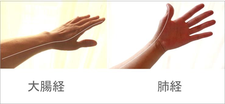 親指の経絡