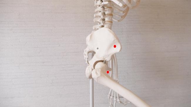 鼠径部の痛みに効くツボ