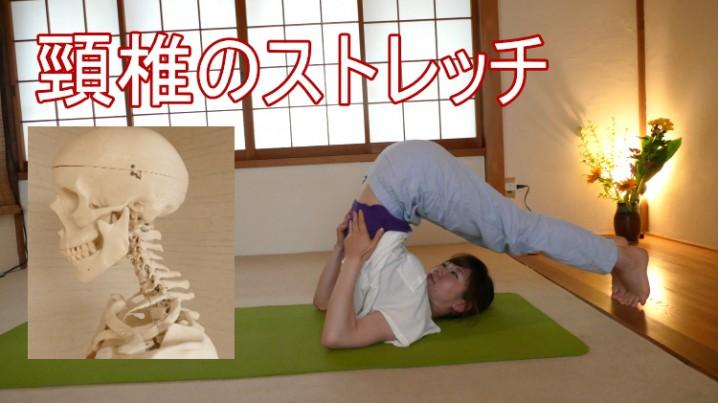 頸椎のストレッチ