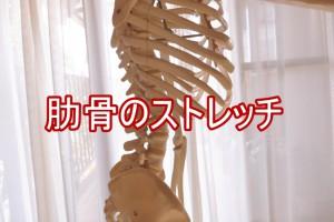 肋骨のストレッチ