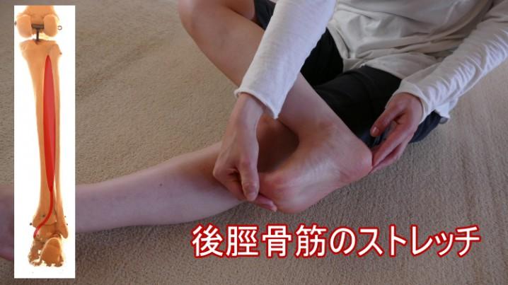 後脛骨筋のストレッチ