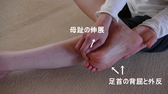 長母趾屈筋のストレッチ