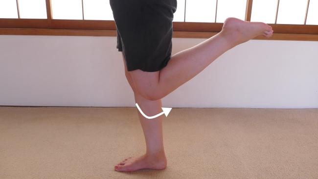 薄筋の膝の屈曲