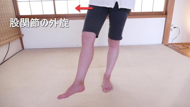外旋の股関節の動き