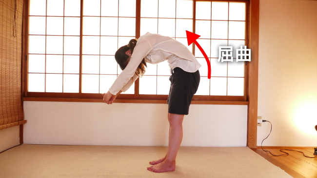 脊柱起立筋の屈曲ストレッチ