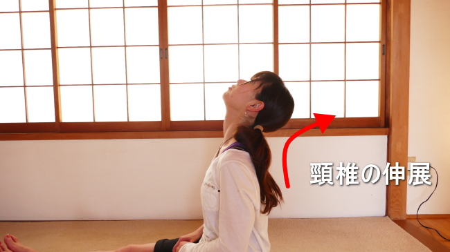 首の伸展の動き