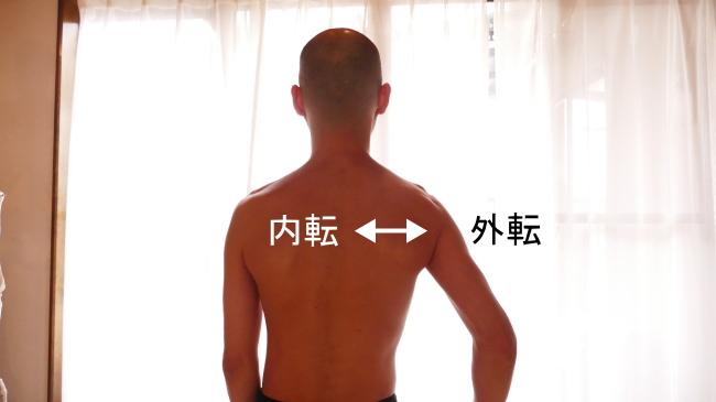肩甲帯の外転と内転