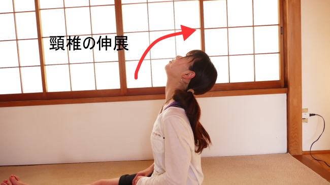 板状筋の頸椎の伸展