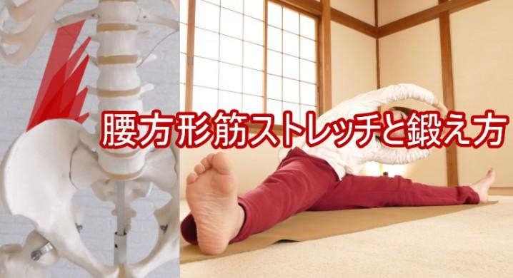 腰方形筋ストレッチと鍛え方