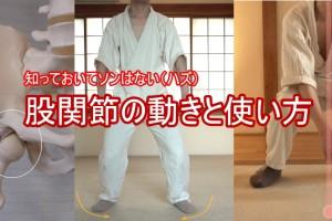 股関節の動きと使い方