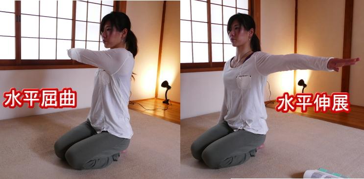 上腕骨・肩関節の水平屈曲と水平伸展