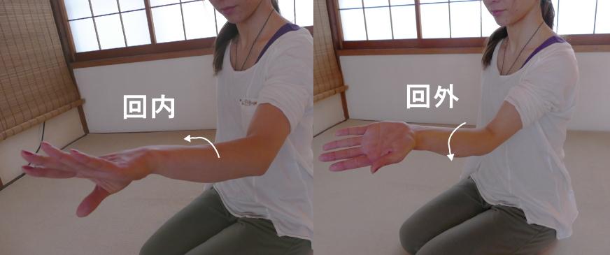 肘の動き、回内と回外