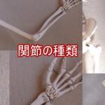 関節の種類