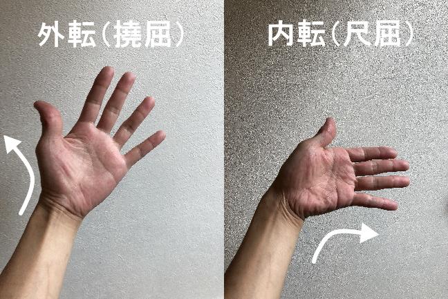 手首の動き、外転と内転
