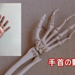 手首の動き