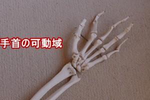 手首の可動域